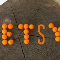 Orange-Etsy-300x300
