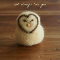 Owl-always-love-you-300x300