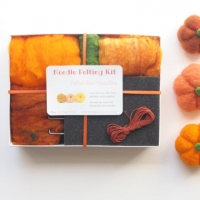 pumpkin needle felting kit by the magic onions