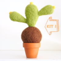 DIY Needle Felting Kit, Desert Cactus Succulent Kit : www.theMagicOnions.com/shop