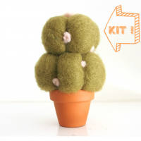 DIY Needle Felting Kit, Mistletoe Cactus Succulent Kit : www.theMagicOnions.com/shop