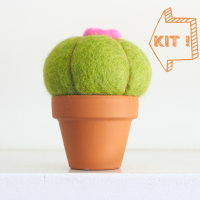 DIY Needle Felting Kit, Baseball Cactus Succulent Kit : www.theMagicOnions.com/shop