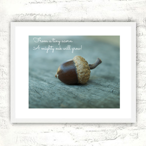 Tiny-Acorn-Mighty-Oak-frame-2