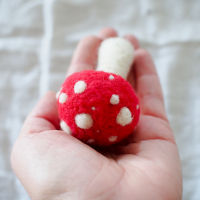 Needle Felted Toadstool Kit :: www.theMagicOnions.com/shop