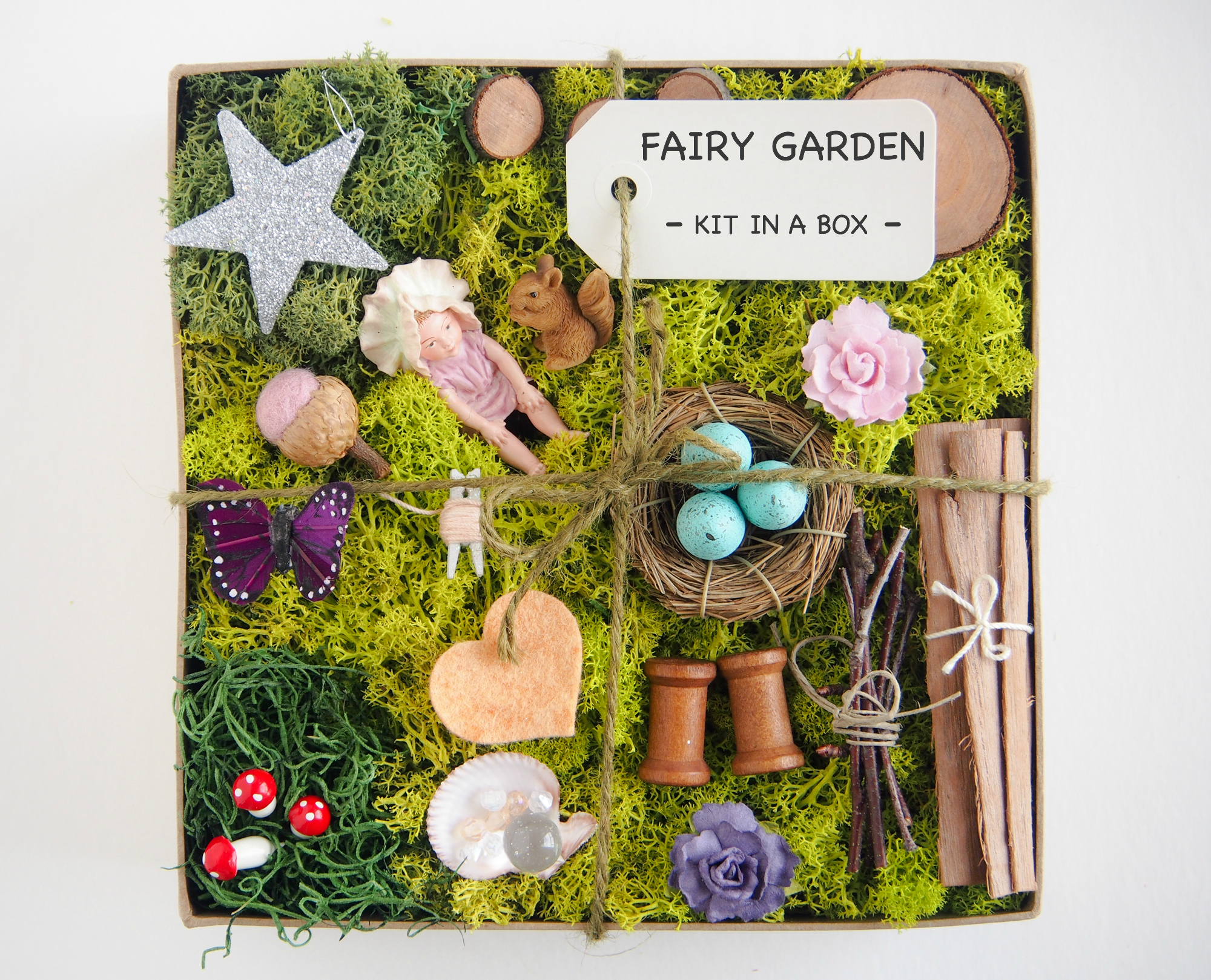 Fairy Garden Kit Baby Emily The Magic Onions Store