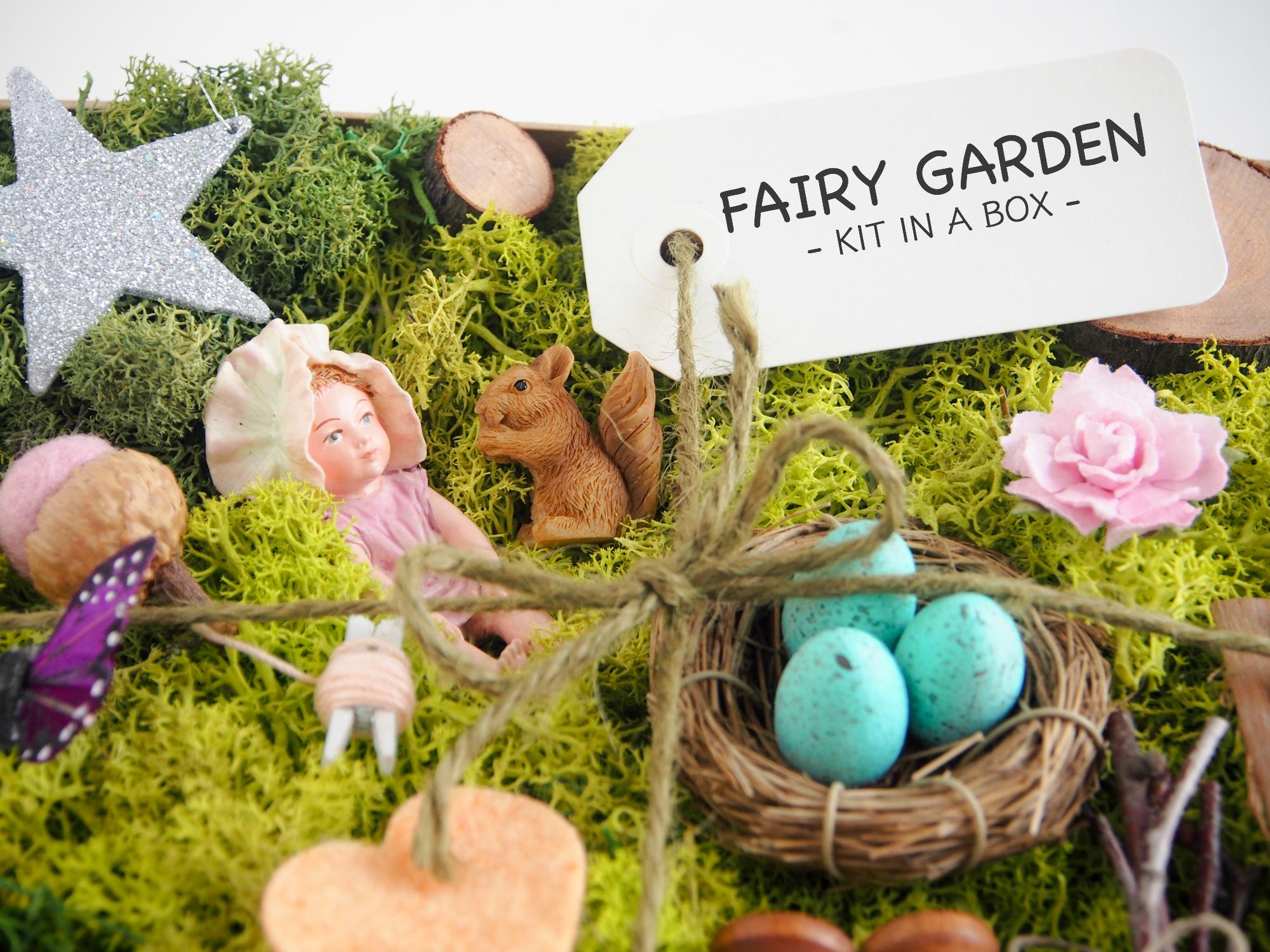 fairy garden kit baby emily the magic onions store