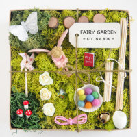 Product Categories Craft Fairy Garden Kits The Magic Onions Store