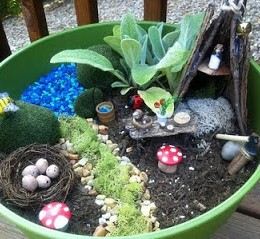 This Weeks Fairy Gardens.
