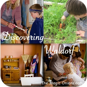 Waldorf Alumni - Discovering Waldorf ~ www.theMagicOnions.com