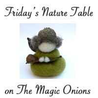 Friday's Nature Table