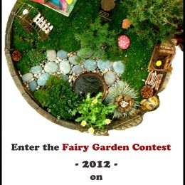The Fairy Garden CONTEST – 2012
