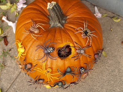 Let's make a Spiders Nest.