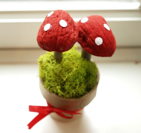Make a Magic Toadstools : www.theMagicOnions.com