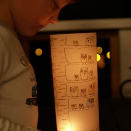 Make a Woodland Luminary