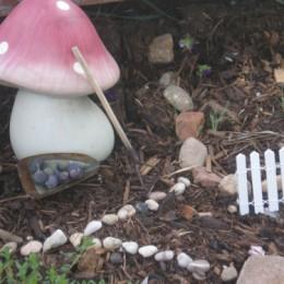 Fairy Garden Feature :: 2013 :: One