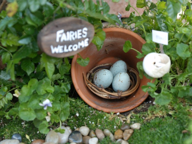 Our New Fairy Garden :: Fairy Gardens :: 2013