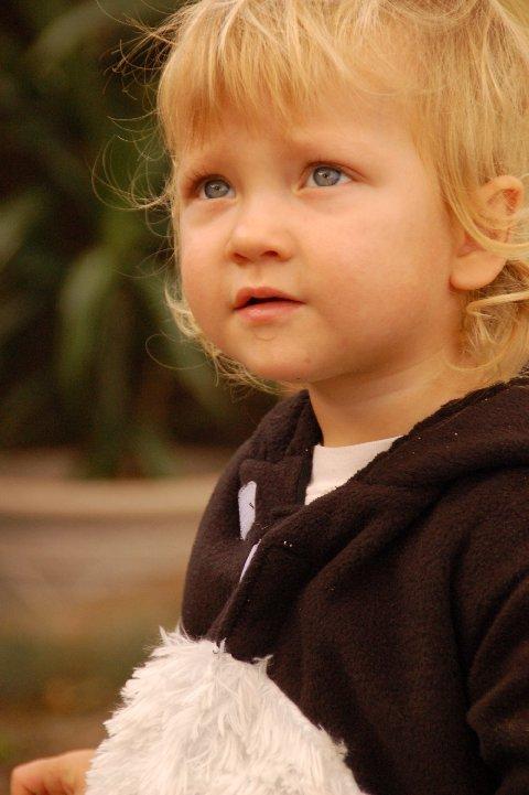 Teddy Bear :: A Letter on your 6th Birthday
