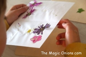 Summer Magic Craft Box on The Magic Onions - www.theMagicOnions.com