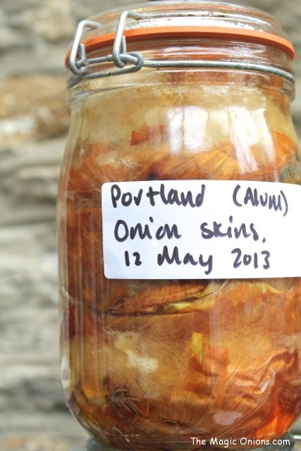 Natural Dye using the Sun - Onion Skins - www.theMagicOnions.com
