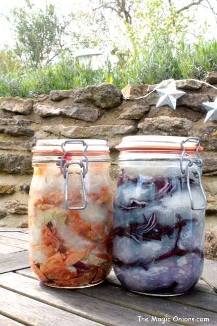Natural Dye using the Sun - Onion Skin and Red Cabbage - www.theMagicOnions.com