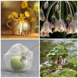 My Favorite Fairy Garden Pins