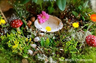Fairy Gardens - The Magic Onions - 2013 - www.theMagicOnions.com