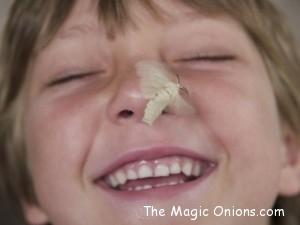 Raising Silkworms on The Magic Onions