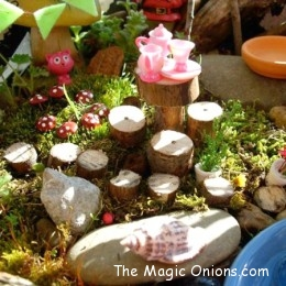 Winner : Fairy Garden Contest : 2013