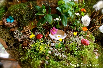 Magical Fairy Garden : www.theMagicOnions.com