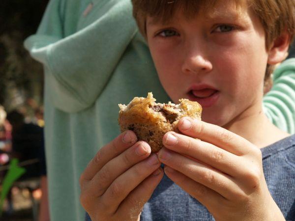 Waldorf Harvest Faire : Maple Village Waldorf School : www.theMagicOnions.com