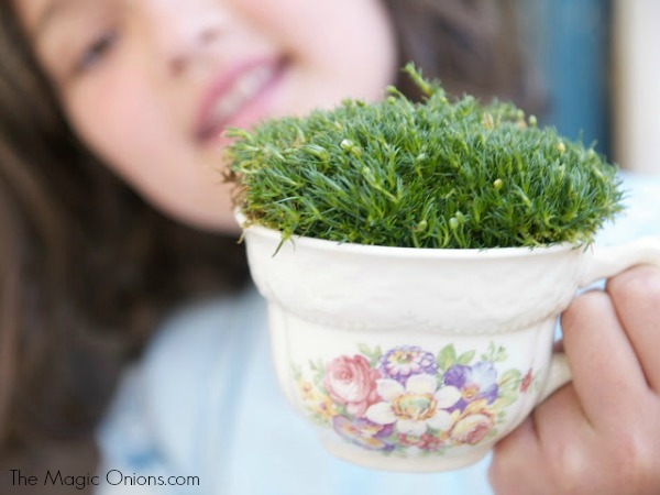 Tea Cup Fairy Garden : Tutorail - The Magic Onions