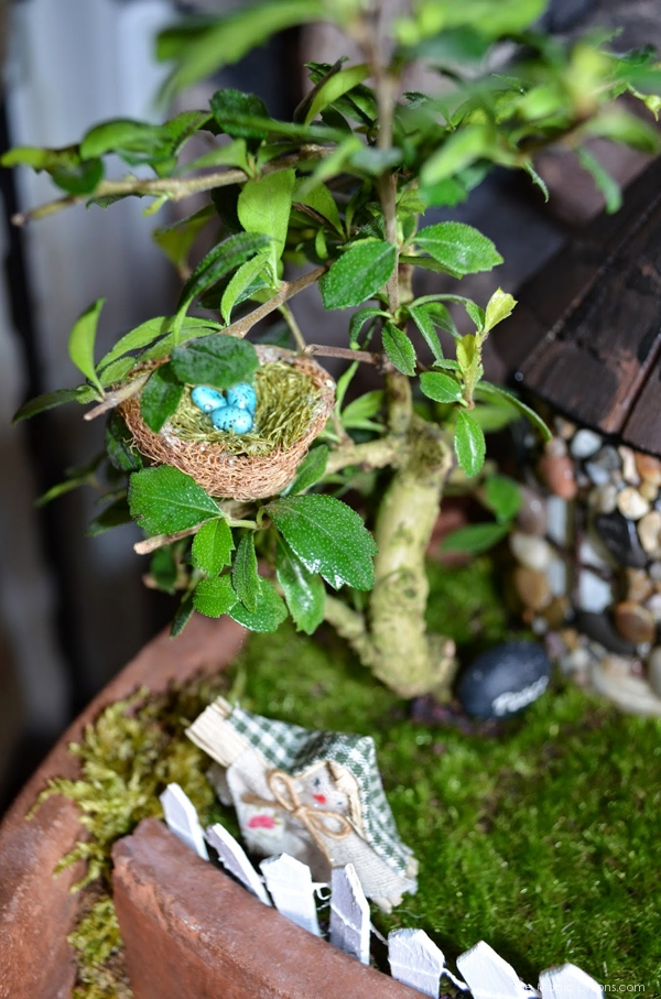 Little Nest in a Bonzi Tree: Fairy Garden : the Magic Onions.com