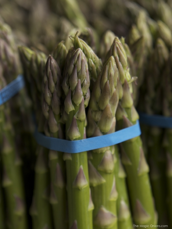 Asparagus - The Magic Onions.com