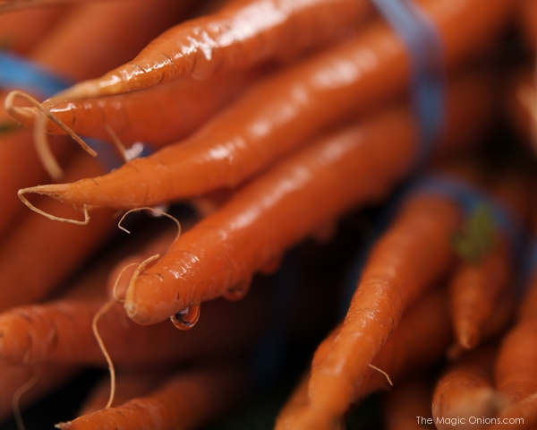 Fresh Carrots - The Magic Onions.com