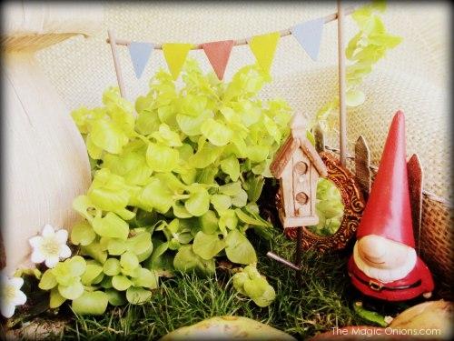 Gnome Fairy Garden : www.theMagicOnions.com