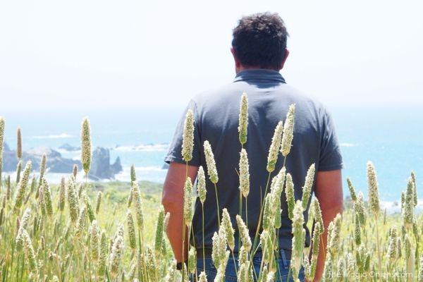 The Magic Onions - www.theMagicOnions.com