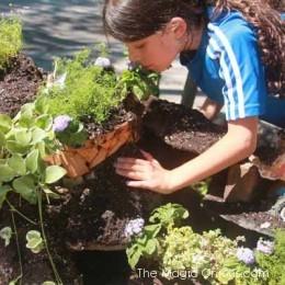 Fairy Garden Feature : TWELVE