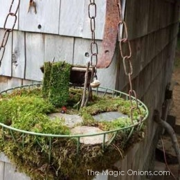 Fairy Garden in a Hanging Basket Feature : FOURTEEN