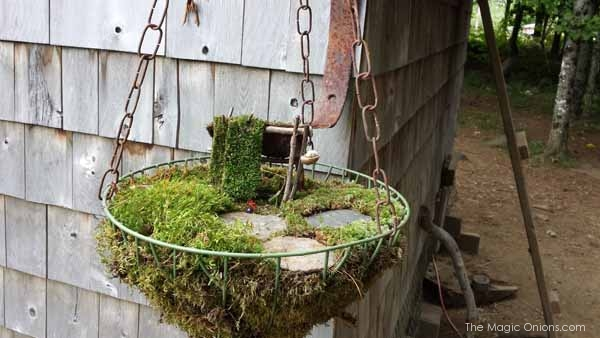Fairy Garden in a Hanging Basket Feature : FOURTEEN