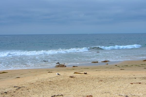 Sea photo at Crystal Cove State Park