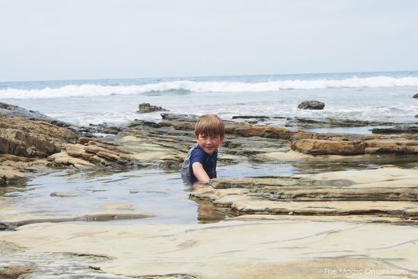 swimming in the rock pools at Crystal Cove beach photo