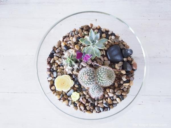 Indoor Succulent Terraruim Fairy Garden