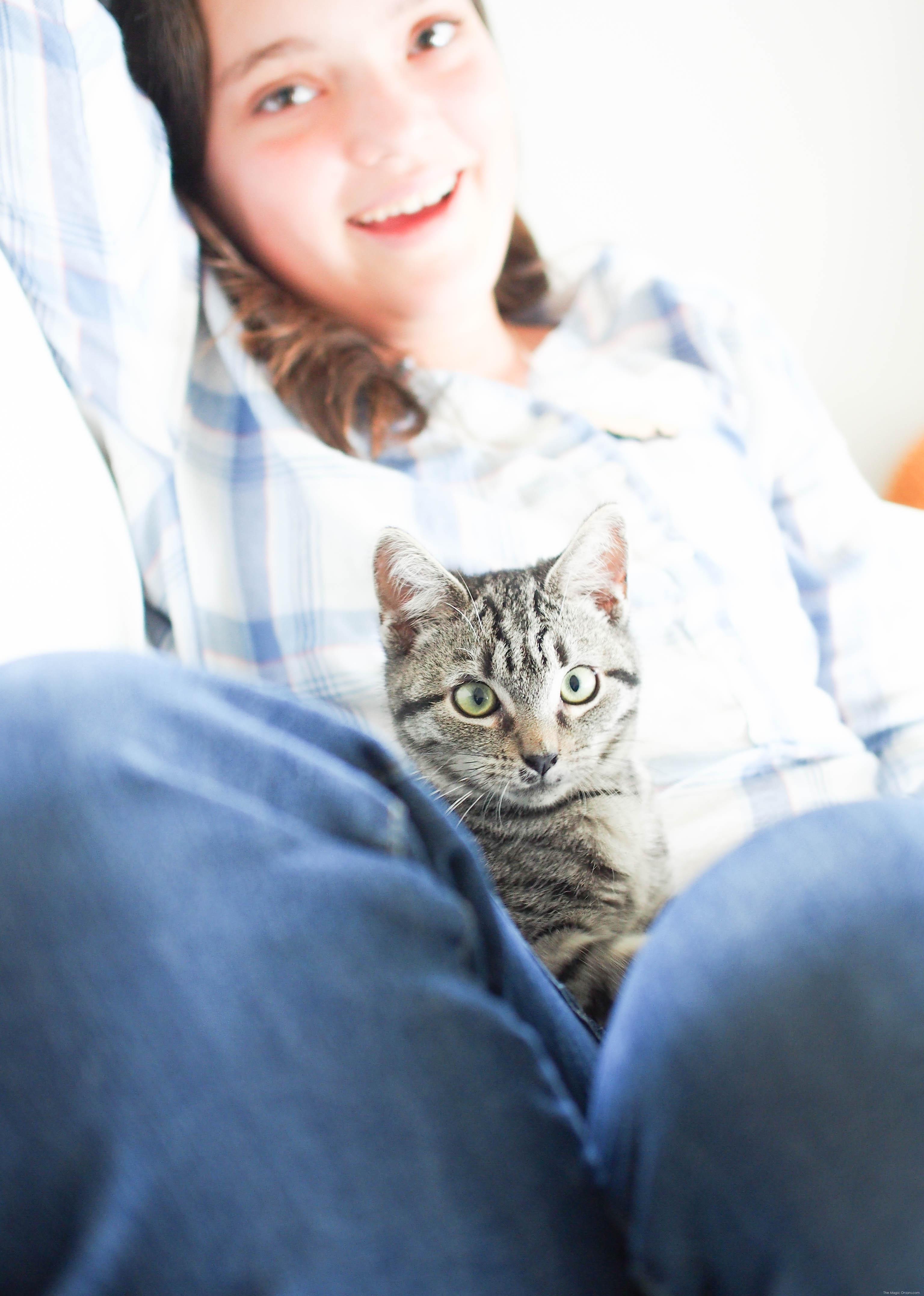 Kitten Flint :: www.theMagicOnions.com