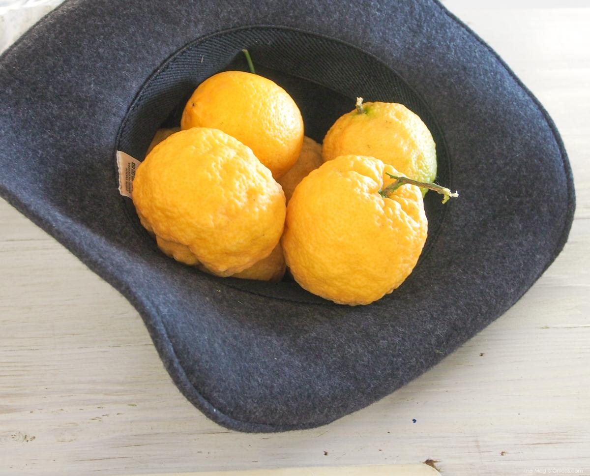 Homemade Lemonade :: www.theMagicOnions.com