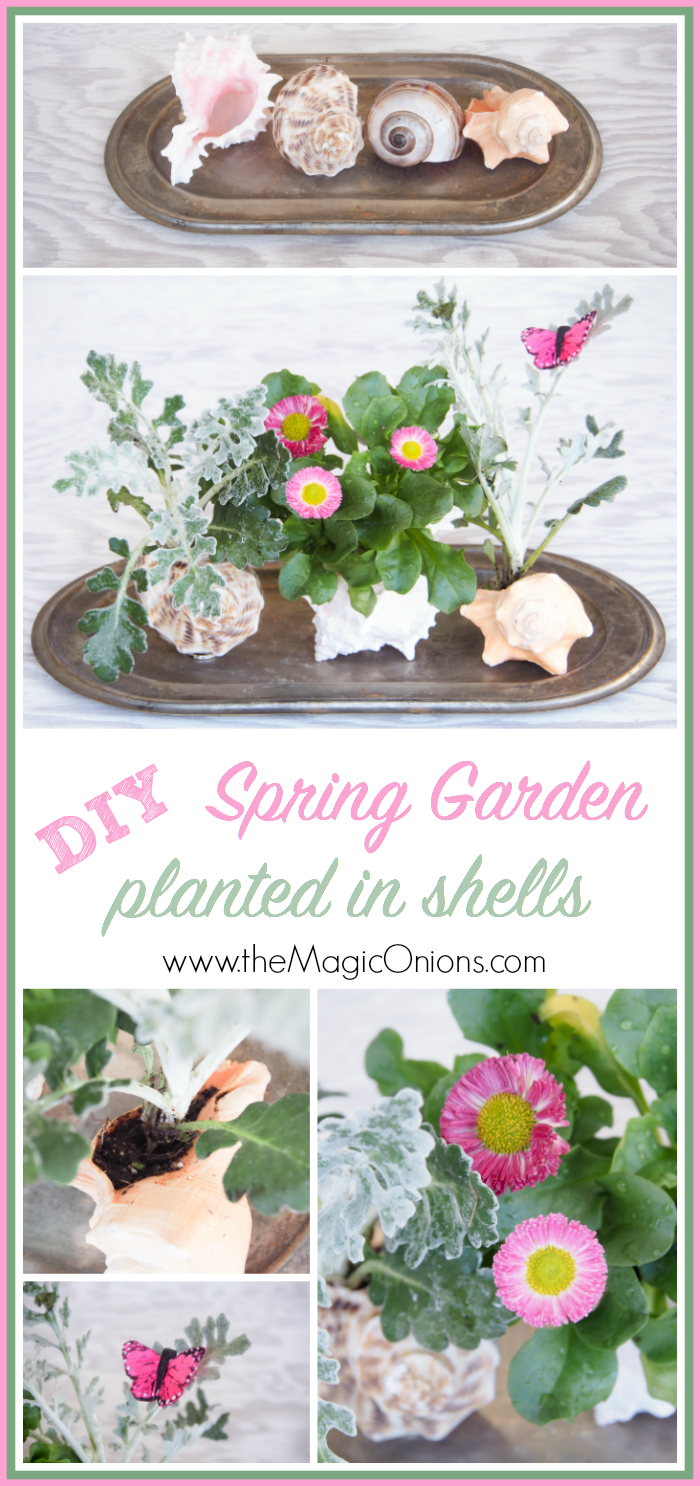 Plant a Shell Garden for Spring :: from The Magic Onions Bog