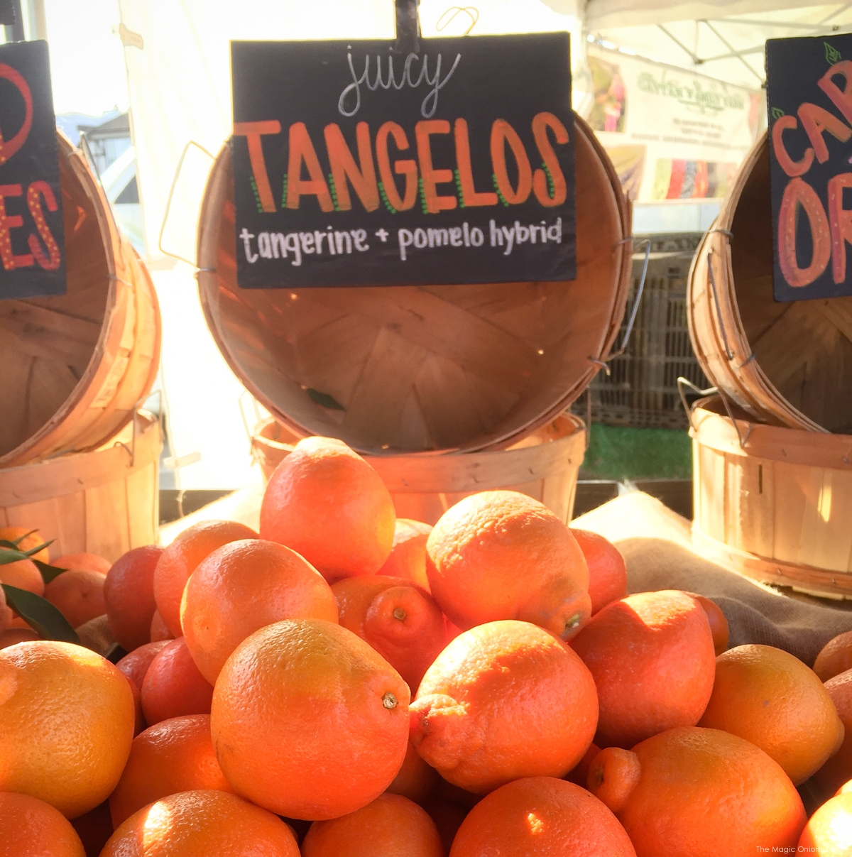 Beautiful tangelos on The Magic Onions Waldorf inspired blog