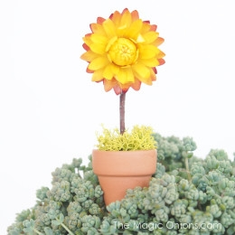 Make a delightful mini SUNFLOWER for your fairy garden with this easy DIY tutorial on The Magic Onions blog