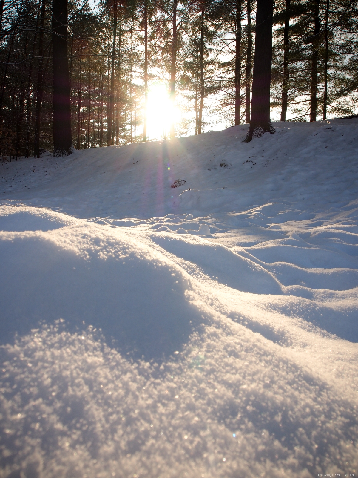 Snow and sunshine in Keene New Hapmshire - www.theMagicOnions.com