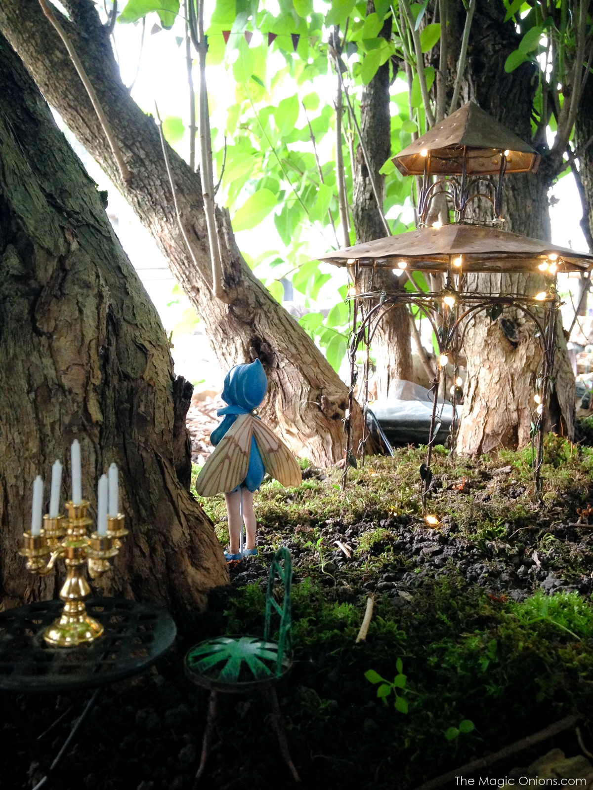 Winner Announced :: 2016 Fairy Garden Contest!