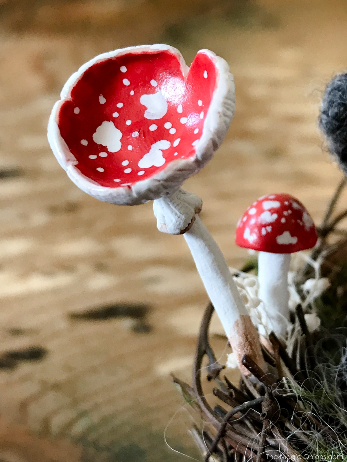 Photo of toadstool